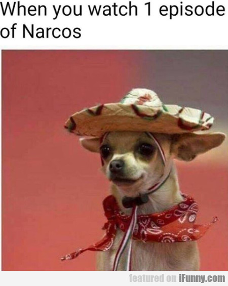 When You Watch 1 Episode Of Narcos...