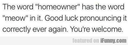 The Word Homeowner Has The Word Meow In It...