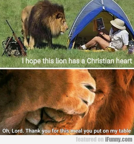 I Hope This Lion Has A Christian Heart - Oh...