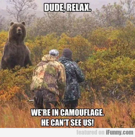 Dude Relax. We're In Camouflage. He Can't See Us