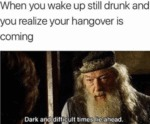 When You Wake Up Still Drunk And You Realize...