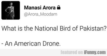 What Is The National Bird Of Pakistan - An...