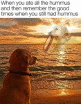 When You Ate All The Hummus And Then Remember..