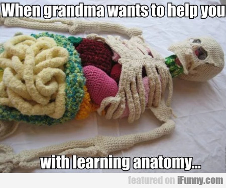 When Grandma Wants To Help You With Learning...