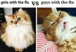 Girls With The Flu Vs Guys With The Flu