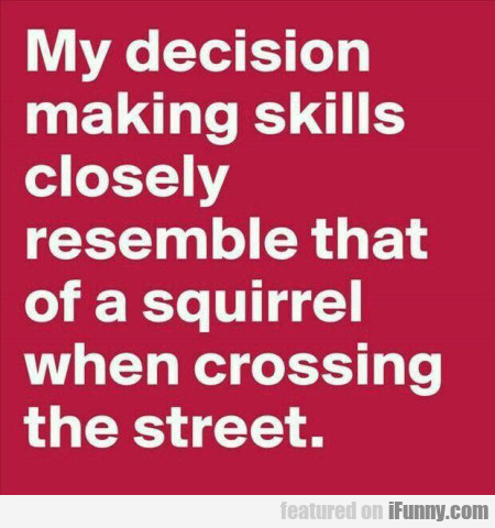 My Decision Making Skills Closely Resemble...