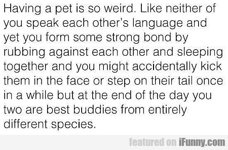 Having A Pet Is So Weird. Like Neither Of...