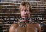 Did U Know? Chuck Norris Had A Role In...