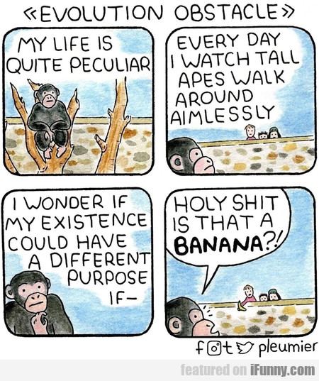 Evolution Obstacle. My Life Is Quite Peculiar.