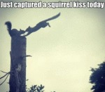 Just Captured A Squirrel Kiss Today