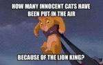 How Many Innocent Cats Have Been Put...