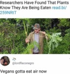Researchers Have Found That Plants Know They...