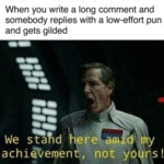When You Write A Long Comment And Somebody...