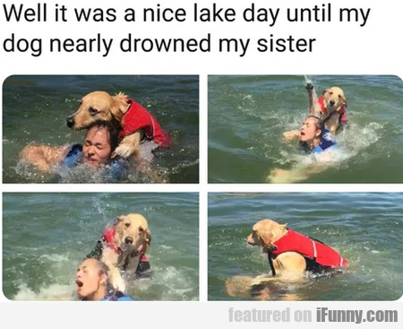 Well It Was A Nice Lake Day Until My Dog...