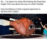 So...i've Spent My Entire Life Thinking The Deep..