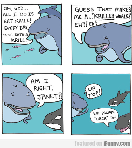 oh, god... all i do is eat krill! every day. just.
