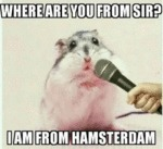 Where Are You From Sir? - I Am From...