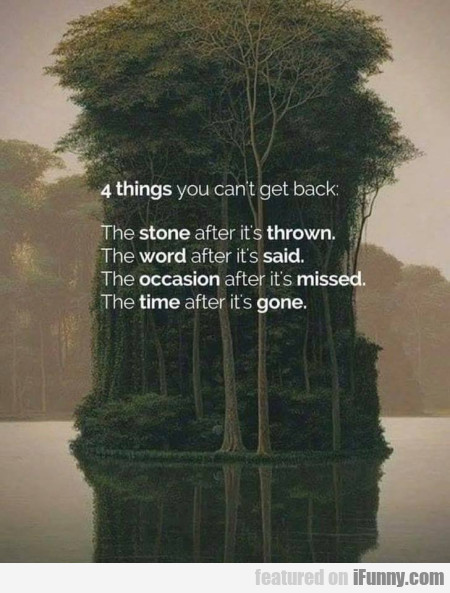 4 Things You Can't Get Back - The Stone After...
