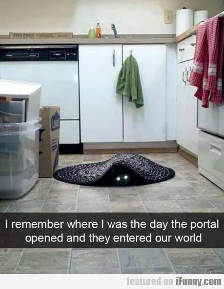 I Remember Where I Was The Day The Portal...