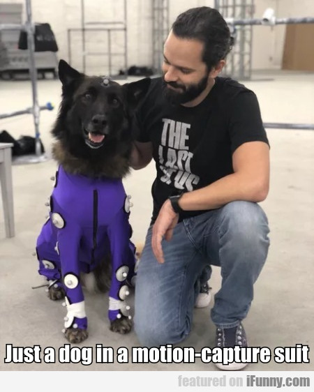 Just A Dog In A Motion-capture Suit