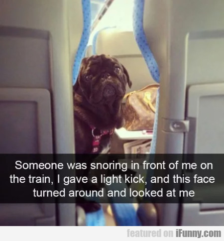Someone Was Snoring In Front Of Me On The Train...