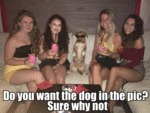 Do You Want The Dog In The Pic? - Sure Why Not