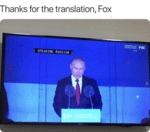 Thanks For The Translation, Fox