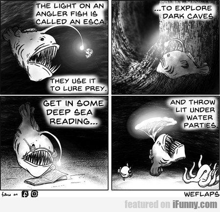 The Light On An Angler Fish Is Called An Esca