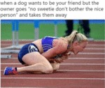 When A Dog Wants To Be Your Friend But The...