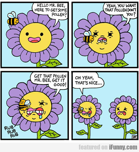 Hello Mr. Bee, Here To Get Some Pollen? Yeah...