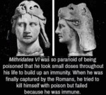 Mithridates Vi Was So Paranoid Of Being Poisoned..