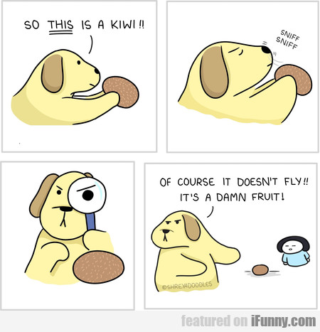 So This Is A Kiwi!! Sniff Sniff... Of Course It Do