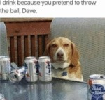 I Drink Because You Pretend To Throw The Ball...
