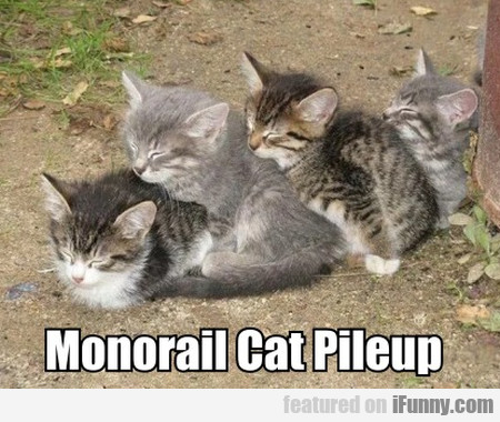 Monorail Cat Pileup
