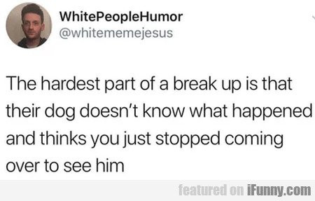 The Hardest Part Of A Break Up Is That Their Dog..