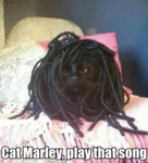 Cat Marley, Play That Song