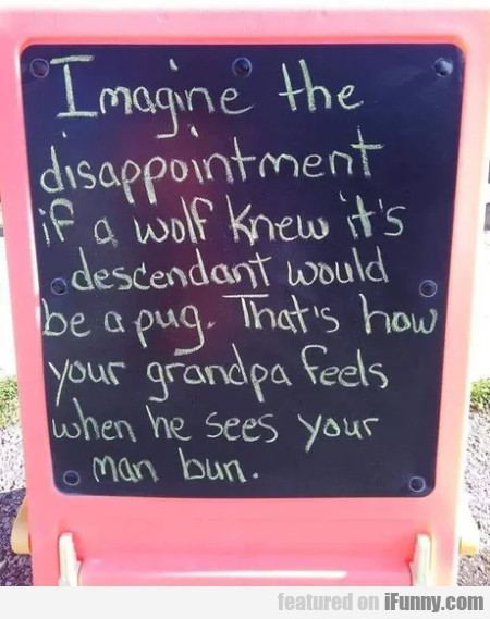 Imagine The Disappointment If A Wolf Knew...
