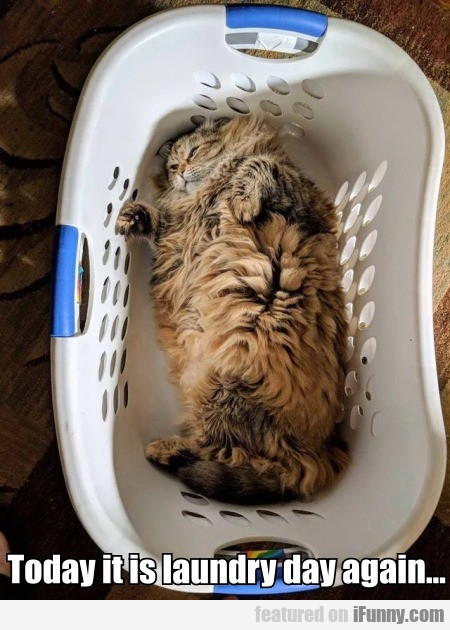 Today It Is Laundry Day Again