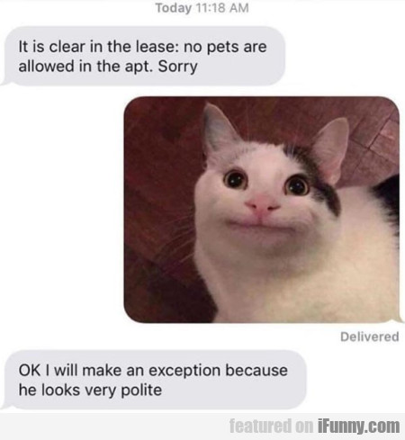 It Is Clear In The Lease - No Pets Are Allowed...