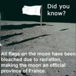 Did You Know - All Flags On The Moon Have Been...