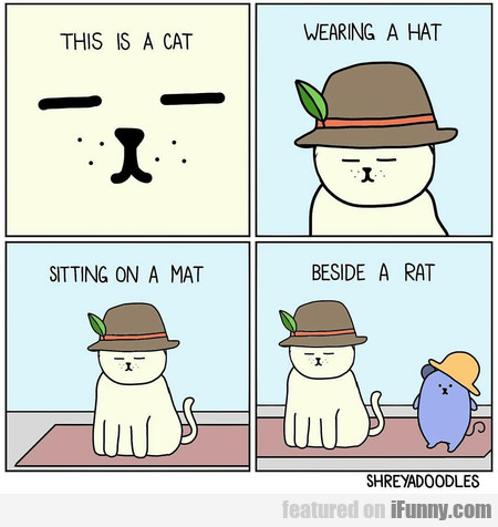 This Is A Cat Wearing A Hat Sitting On A Mat...