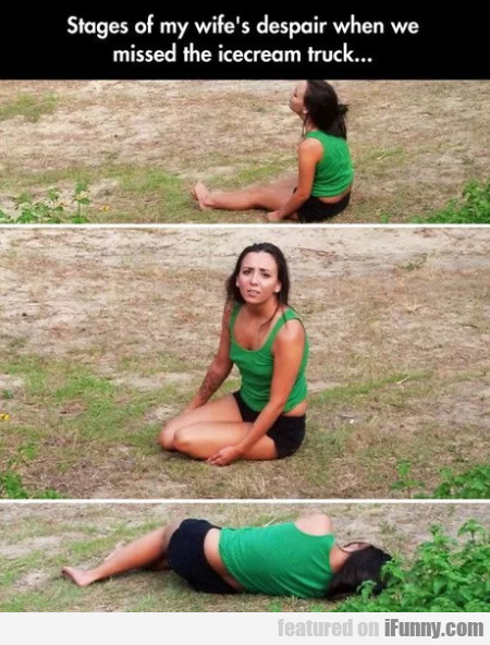 Stages Of My Wife's Despair When We Missed The...