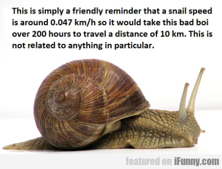 This Is Simply A Friendly Reminder That A Snail...