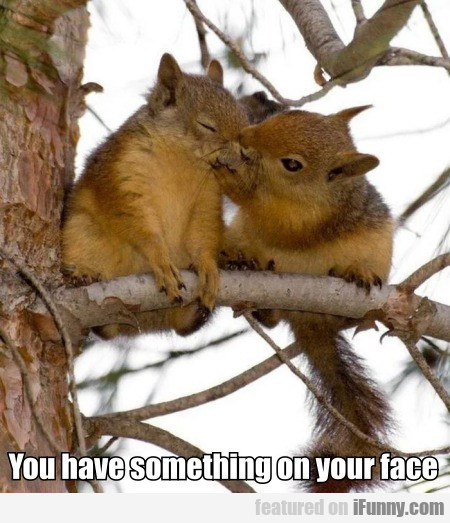 You Have Something On Your Face
