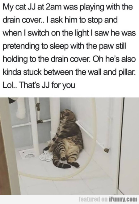 My Cat Jj At 2am Was Playing With The Drain...