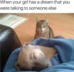 When Your Girl Has A Dream That You Were Talking..