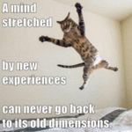 A Mind Stretched By New Experiences Can Never...