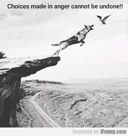 Choices Made In Anger Cannot Be Undone