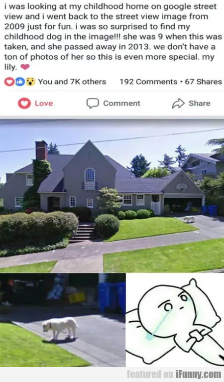 I Was Looking At My Childhood Home On Google...