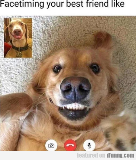 Facetiming Your Best Friend Like
